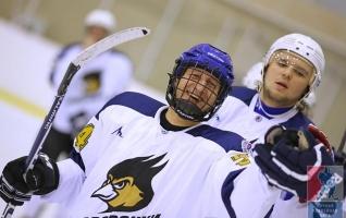 Матч-марафон Ночной хоккейной лиги (НХЛ)